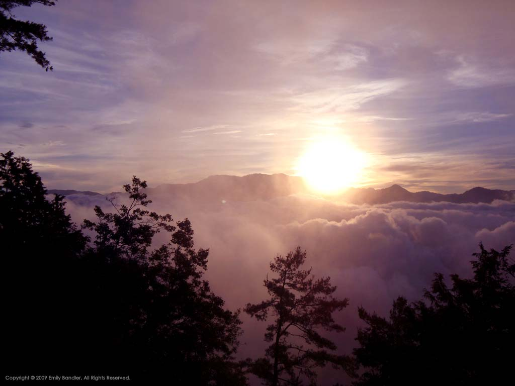 Alishan Sunrise
