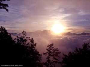 """Alishan Sunrise""